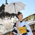 白×黒 蝶と萩