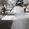 雪の南禅寺