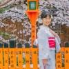 19/04/02祇園
