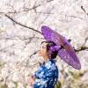 19/04/09渉成園