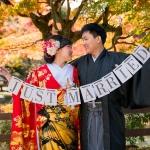 17/11/21祇園+円山公園